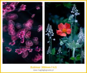 Najlepszy obiektyw domakro Rubinar 300 mm f 4.5