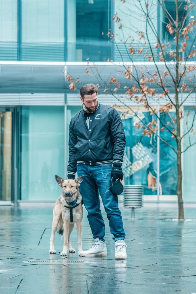 Fotografia psów, czyli sesja zdjęciowa dla Twojego psa