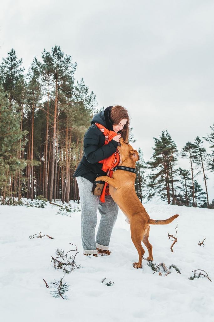 Fotografia psów - sesja zdjęciowa dla psa