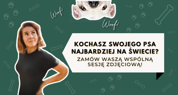 Fotograf psów Warszawa, czyli sesja dla psa - Magda Głogowska